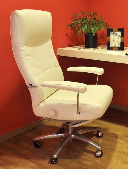 Recliner Chair Josh Executive Lafer Josh Recliner & Recliner Chair Josh Executive Leather Office Chair Recliner Lafer Josh islam-shia.org